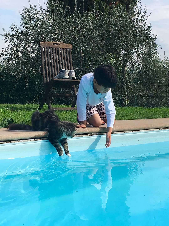 Adoption in Deutschland - unser Thaio ist bei uns